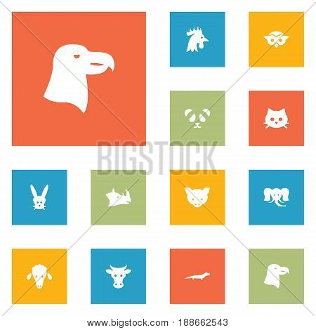 Set Of 12 Alive Icons Set.Collection Of Rooster, Rhinoceros, Kine And Other Elements.