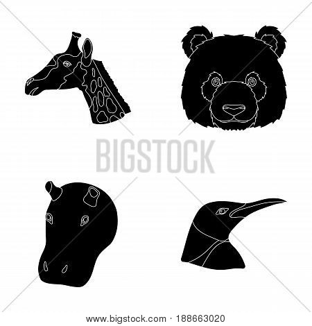 Panda, giraffe, hippopotamus, penguin, Realistic animals set collection icons in black style vector symbol stock illustration .