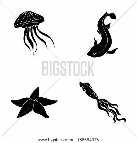 Jellyfish, squid and other species.Sea animals set collection icons in black style vector symbol stock illustration .