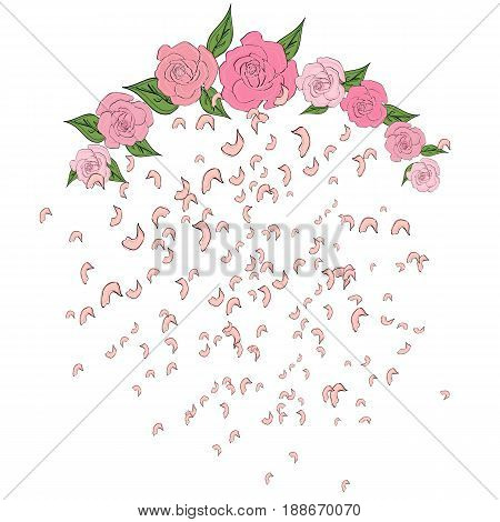 Rose petals falling flying from a semicircular arch of roses with leaves Tenderness wedding background. Falling flying petals of roses cherry blossoms cherries apricots apple-trees. Whirlwind wedding background love
