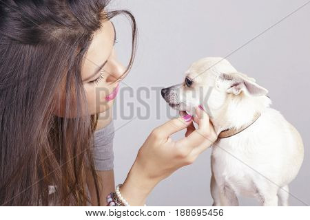 Latin Girl With Her Lovely White Chihuahua, Indoors.