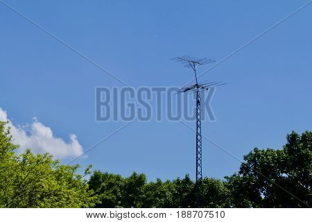 An old TV antenna shows against the blue sky above the trees.