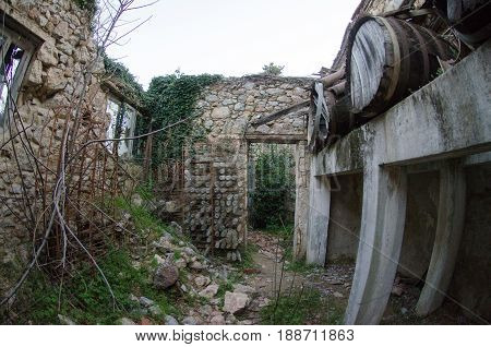 Abandoned Winery,old Rotten Barrels