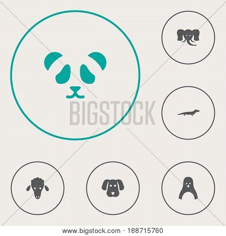 Set Of 6 Zoo Icons Set.Collection Of Hound, Diver, Bear And Other Elements.