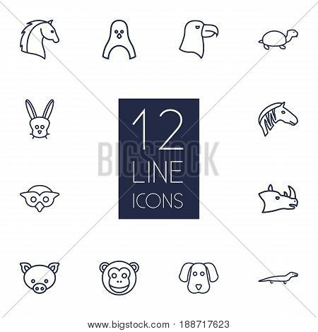 Set Of 12 Zoology Outline Icons Set.Collection Of Horse, Lizard, Owl And Other Elements.