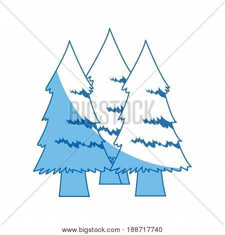 pine tree foliage trunk forest vegetation icon vector illustration