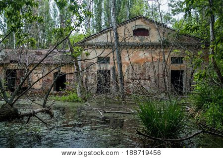 Old flooded overgrown ruined abandoned forsaken industrial building among bog after the flood disaster