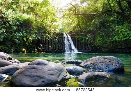 Tropical Waterfall Lower Waikamoi Falls And A Small Crystal Clear Pond, Inside Of A Dense Tropical R