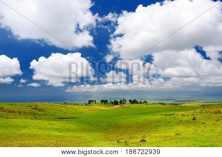 Beautiful Tranquil View Of Maui Landscape With White Clouds Over Green Fields