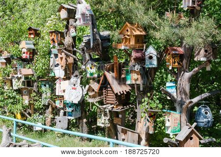 nesting box. it is a lot of nesting boxes. various nesting boxes on a tree