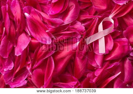 Pink Breast Cancer Ribbon on blossom background. Top view.