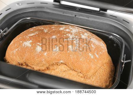 Fresh crusty loaf in bread maker, closeup