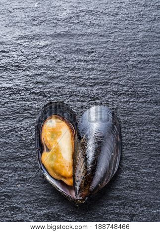 Boiled mussel on the graphite background.