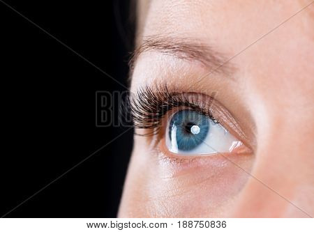 Close-up face of beautiful young woman with beautiful blue eye and big pretty eyelashes and eyebrows on black background. Macro of human eye - open expressive look.