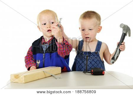 Two toddler boys each grasping the same handful of large nails as they play handyman with a block of wood and tools.  On a white background.