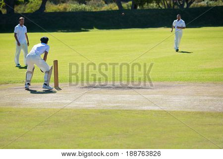 Cricket match at grassy field on sunny day