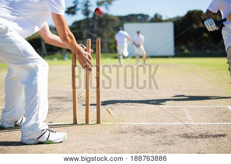 Wicket keeper hitting stumps during match on sunny day