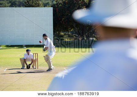 Rear view of umpire standing at cricket match field on sunny day