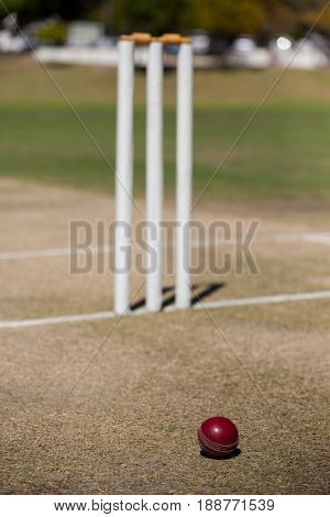 High angle view of ball by stumps on cricket field during sunny day