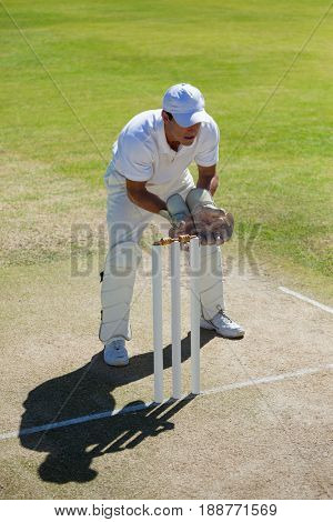 High angle view of wicketkeeper standing behind stumps on field during sunny day