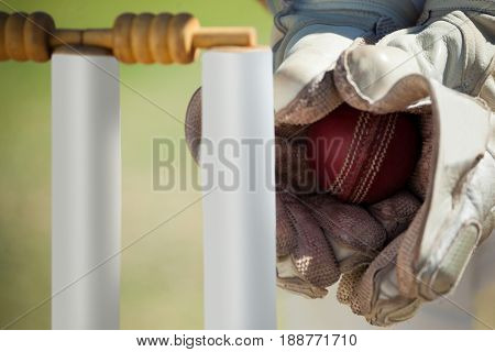 Cropped hands of wicketkeeper catching ball behind stumps