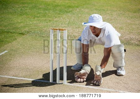 High angle view of wicketkeeper crouching behind stumps on field during sunny day