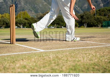 Low section of player standing by stumps at cricket field on sunny day