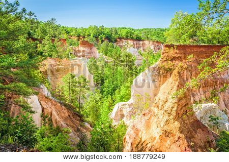 Providence Canyon in  Lumpkin, Georgia, USA.