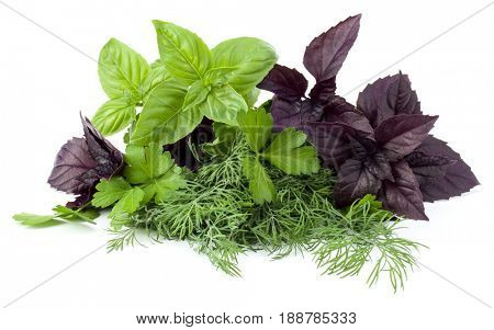 Fresh spices and herbs isolated on white background cutout. Sweet basil, red basil leaves, dill and parsley.