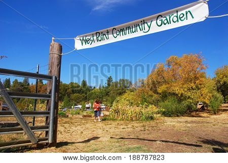 WEST POINT, CALIFORNIA, USA - October 3, 2009: Two woman stroll through the West Point Community Garden
