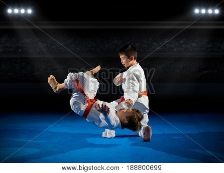 Little boys martial arts fighters at sports hall