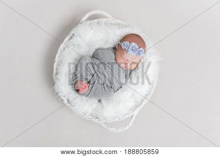 Sleeping baby wrapped in gray blanket, on pillow in basket, flowery headband on, topview