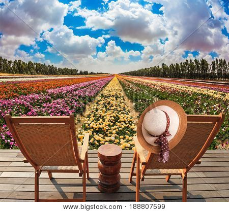 Elegant straw women's hat on a back a chaise lounge. Wooden chaise lounges  in the meadow with flowers. Concept of ecological tourism. Rural rest