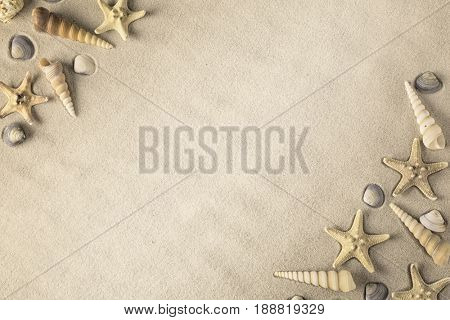 shellfish frame on sandy beach. Sea shell and star laying in sand. Background with starfish and seashells