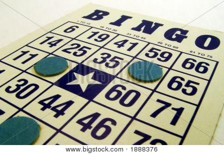 O Bingo