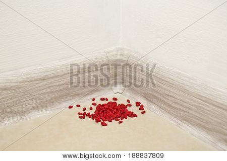 Pile of rat poison on floor
