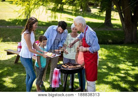 Happy multi generation family enjoying the barbeque in park