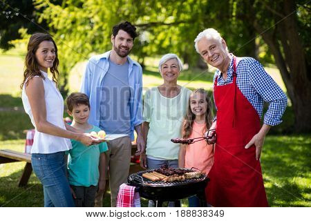 Portrait of multi generation family standing near the barbeque in park