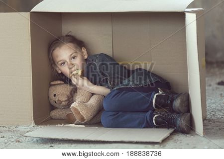 Poor little girl lying in cardboard box and eating bread