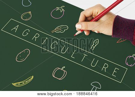Hand writing on a board about healthy vegetable icon