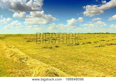 mown field on a bright autumn day