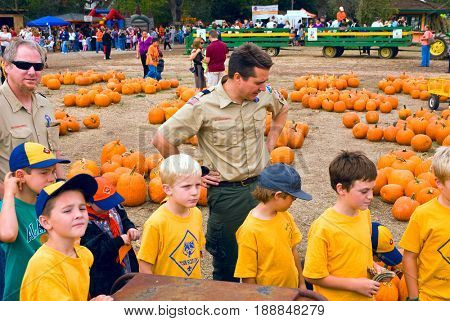 GRANITE BAY, CALIFORNIA, USA - October 18, 2009: Cub Scouts on a field trip to a pumpkin farm