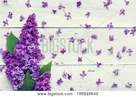 lilac flowers bouquet over white wooden background. top view. vintage toning