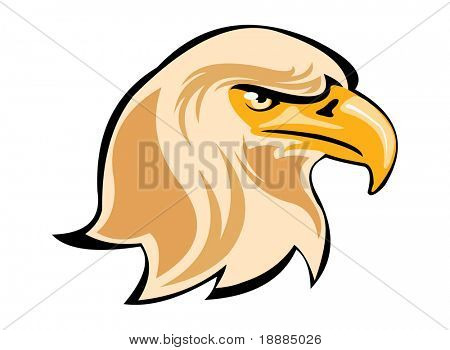 image of eagle head isolated on white poster