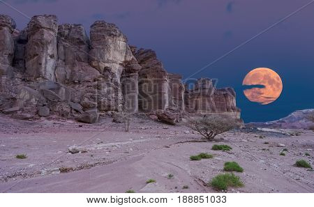 Pillars of Solomon's king in Timna Park that is located 25 km north of Eilat (Israel), combines beautiful scenery with unique geology, variety of sport and family activities