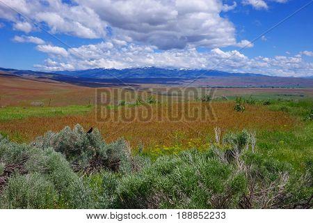 Cuddy Mountain overlooks Midvale, Idaho on a Spring Day.
