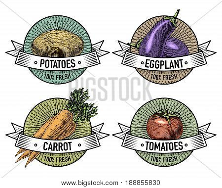 Vintage set of labels, emblems or logo for vegeterian food, vegetables hand drawn or engraved. Retro farm american style. .