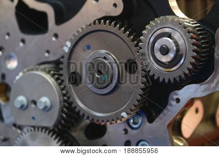 Gearwheels of a car engine valve train