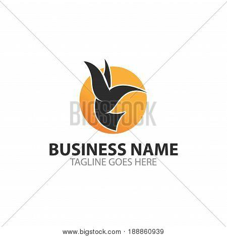 Colibri bird vector template suitable fo logo template