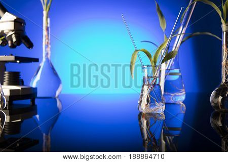 Biotechnology and floral science theme. Experimenting with flora in laboratory.